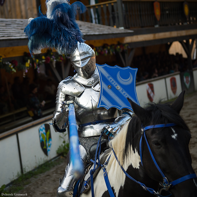 Entertainment: The Jousters VIP seating block knight